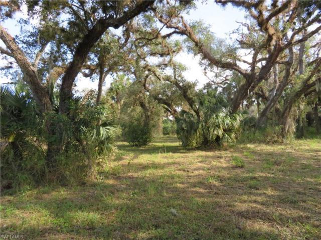 4023 Oak Haven Dr, Labelle, FL 33935 (MLS #218032757) :: Clausen Properties, Inc.