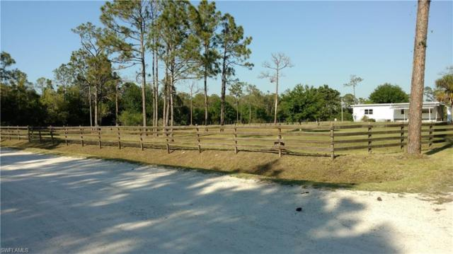 20550 Jamie Rd, North Fort Myers, FL 33917 (MLS #218033991) :: The New Home Spot, Inc.