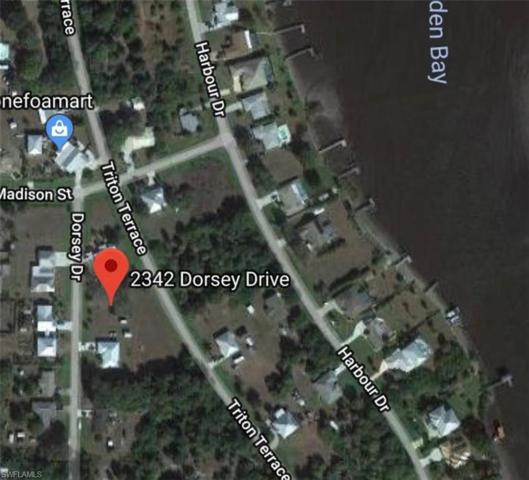 2342 Dorsey Dr, Punta Gorda, FL 33983 (MLS #218035483) :: The New Home Spot, Inc.