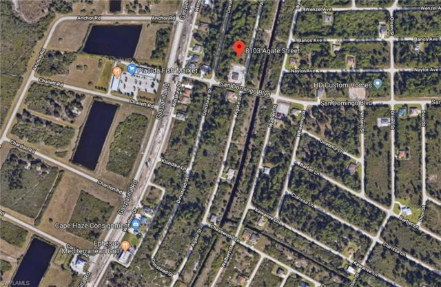8103 Agate St, Port Charlotte, FL 33981 (MLS #218035643) :: RE/MAX Realty Group