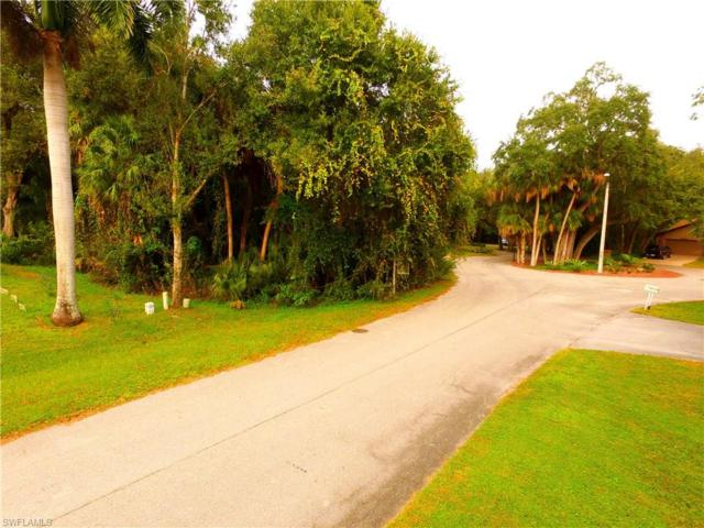 4261 Silver Sword Ct, North Fort Myers, FL 33903 (MLS #218036352) :: The New Home Spot, Inc.
