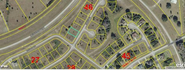 Calico St, Labelle, FL 33935 (MLS #218037307) :: The New Home Spot, Inc.