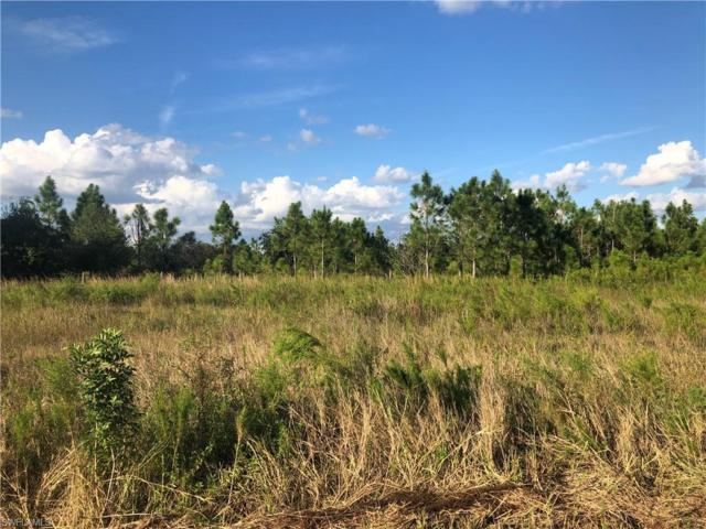 Address Not Published, Fort Myers, FL 33913 (MLS #218041443) :: Clausen Properties, Inc.