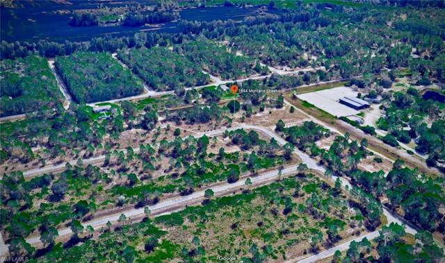 1844 Montana St, Lehigh Acres, FL 33972 (MLS #218041486) :: Clausen Properties, Inc.