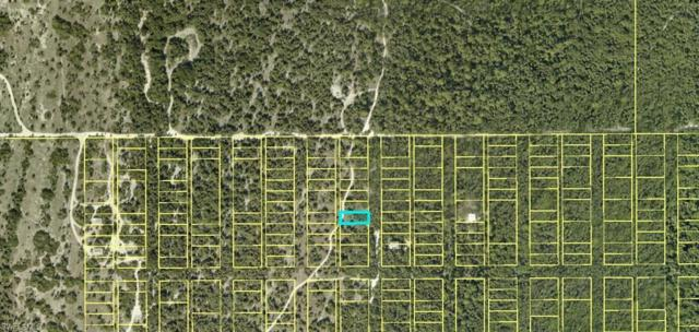 Address Not Published, Other, FL 33924 (MLS #218041557) :: Clausen Properties, Inc.
