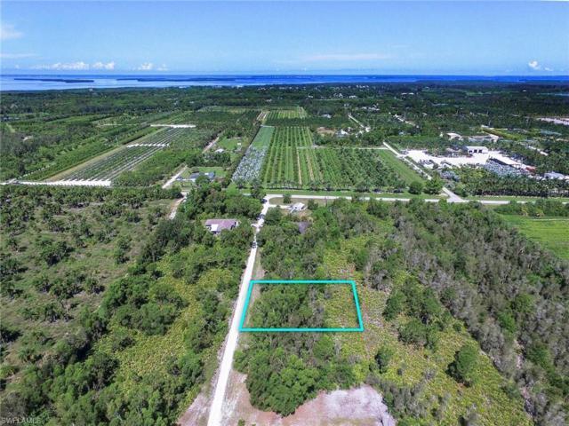6342 Cedelia Rd, Bokeelia, FL 33922 (MLS #218041593) :: Clausen Properties, Inc.