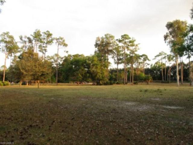 12401 Flintlock Ln, Fort Myers, FL 33912 (MLS #218041902) :: Clausen Properties, Inc.