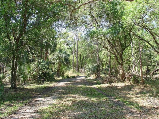 975 Silver Lake Rd, Labelle, FL 33935 (MLS #218042066) :: The New Home Spot, Inc.
