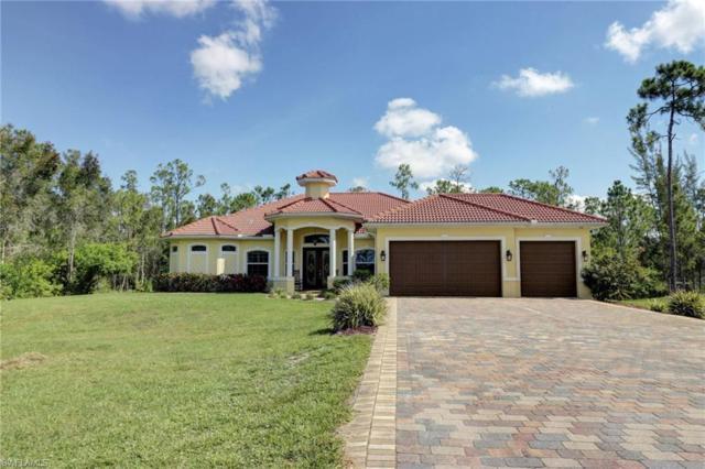10675 Red Dragon Ln, Bonita Springs, FL 34135 (MLS #218043272) :: Clausen Properties, Inc.
