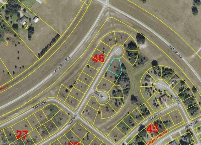 Calico St, Labelle, FL 33935 (MLS #218044397) :: Clausen Properties, Inc.