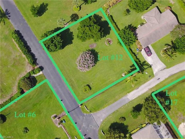 16111 Carver Gardens Dr, Fort Myers, FL 33908 (MLS #218045407) :: Clausen Properties, Inc.