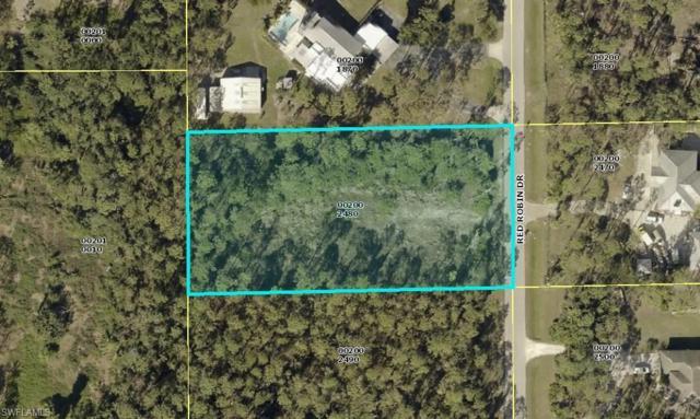 24230 Red Robin Dr, Bonita Springs, FL 34135 (MLS #218045480) :: Clausen Properties, Inc.