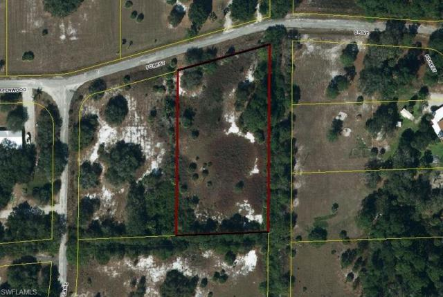 16400 Greenwood Forest Dr, Clewiston, FL 33440 (MLS #218046369) :: The New Home Spot, Inc.