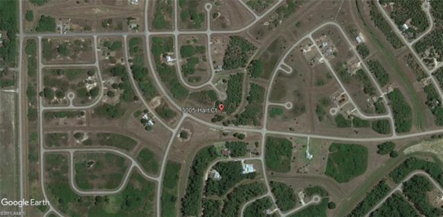 3005 Hart Ct, Labelle, FL 33935 (MLS #218046784) :: Clausen Properties, Inc.