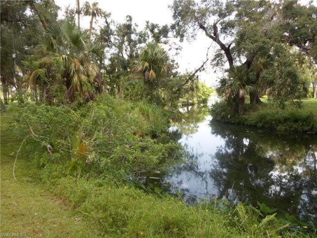 676 Turtle Ln, Labelle, FL 33935 (MLS #218047343) :: Clausen Properties, Inc.