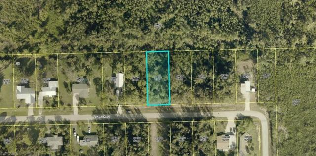 3518 Papaya St, St. James City, FL 33956 (MLS #218050455) :: The New Home Spot, Inc.