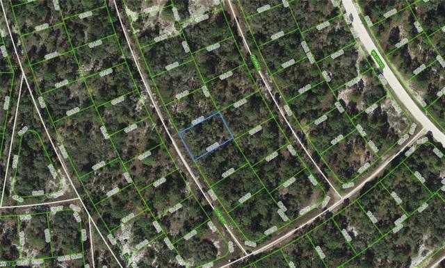 367 Concert Dr, Lake Placid, FL 33852 (MLS #218051220) :: Clausen Properties, Inc.