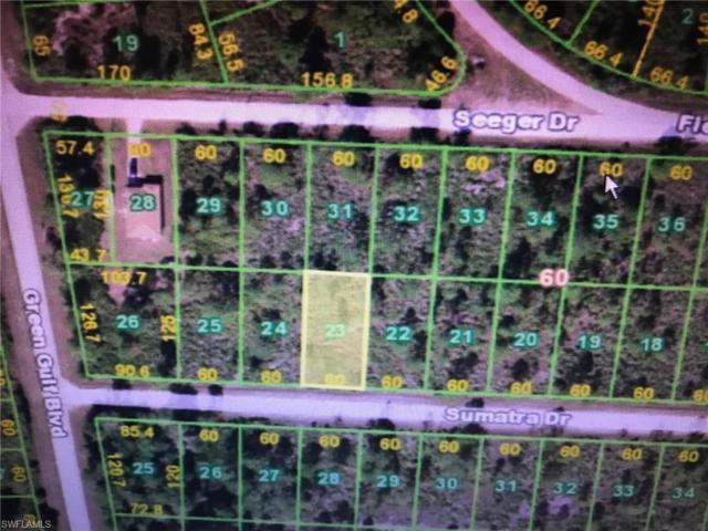27048 Sumatra Dr, Punta Gorda, FL 33955 (MLS #218052893) :: The New Home Spot, Inc.