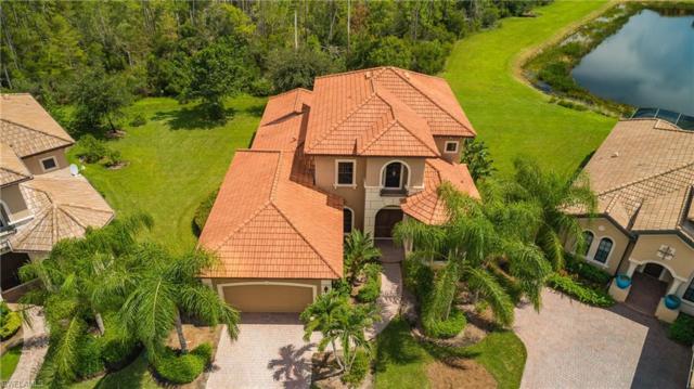 8848 Sarita Ct, Fort Myers, FL 33912 (MLS #218054662) :: Clausen Properties, Inc.