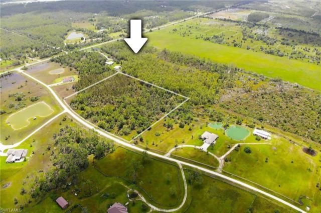 19800 Corkscrew Estates Ct, Estero, FL 33928 (MLS #218057405) :: Clausen Properties, Inc.