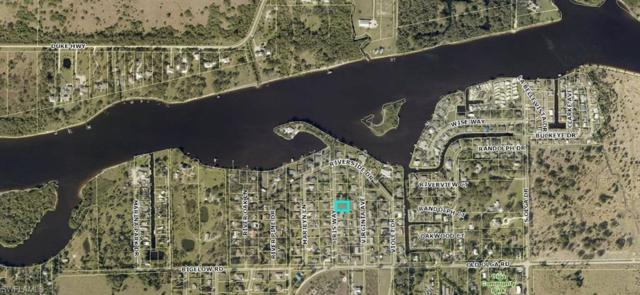 2226 Iris Way, Fort Myers, FL 33905 (MLS #218058266) :: Clausen Properties, Inc.