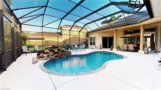 11102 Sierra Palm Ct, Fort Myers, FL 33966 (MLS #218059340) :: Clausen Properties, Inc.