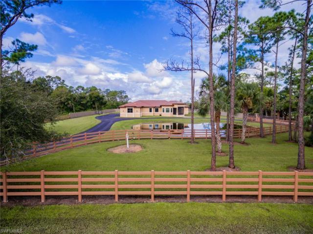 2210 Phillips Rd, FORT DENAUD, FL 33935 (MLS #218060999) :: RE/MAX DREAM