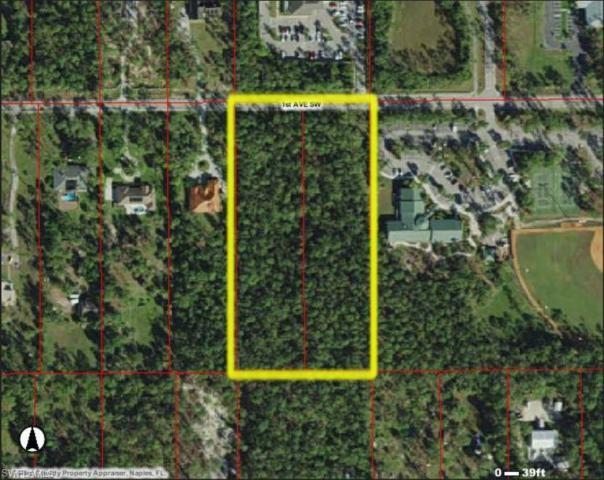 1st Avenue, Sw Ave, Naples, FL 34117 (MLS #218061775) :: RE/MAX Realty Team
