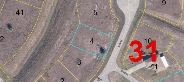 1071 Capri Ct, Labelle, FL 33935 (MLS #218066716) :: The New Home Spot, Inc.