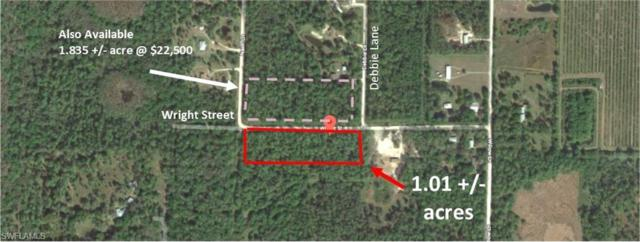 Wright Ave, Labelle, FL 33935 (MLS #218066973) :: RE/MAX Realty Group