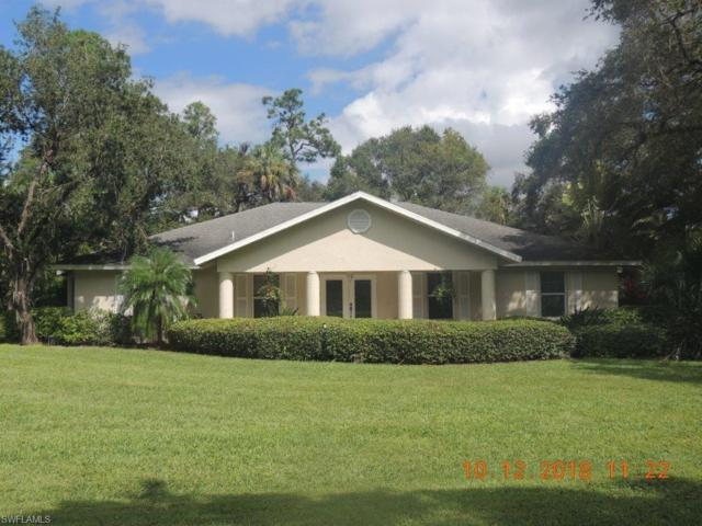 660 Turtle Ln, Labelle, FL 33935 (MLS #218067326) :: The New Home Spot, Inc.