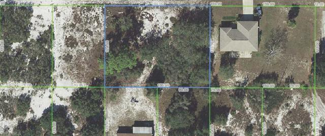 3036 Buttercup Ln, Lake Placid, FL 33852 (MLS #218067901) :: Clausen Properties, Inc.