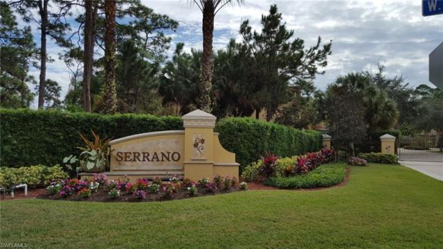 27133 Serrano Way, Bonita Springs, FL 34135 (MLS #218071962) :: RE/MAX Realty Team