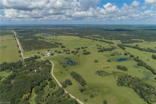 26005 Harrison Rd, Myakka City, FL 34251 (MLS #218073374) :: Clausen Properties, Inc.