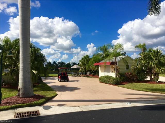 Lot 270    3030 Gray Eagle Pky, Labelle, FL 33935 (MLS #218073760) :: Clausen Properties, Inc.