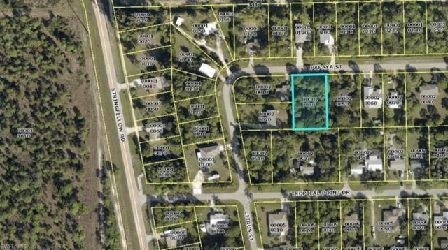 3739 Papaya St, St. James City, FL 33956 (MLS #218074197) :: Clausen Properties, Inc.