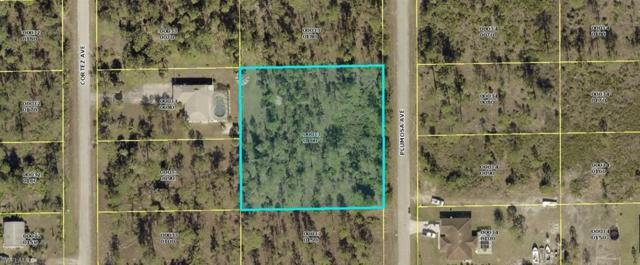 1007 Plumosa Ave, Lehigh Acres, FL 33972 (MLS #218075758) :: Clausen Properties, Inc.