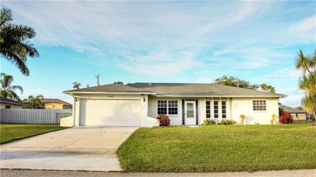 1103 SW 45th Ter, Cape Coral, FL 33914 (MLS #218077961) :: Palm Paradise Real Estate