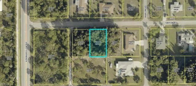 5951 Tarpon Rd, Bokeelia, FL 33922 (MLS #218079271) :: RE/MAX Radiance