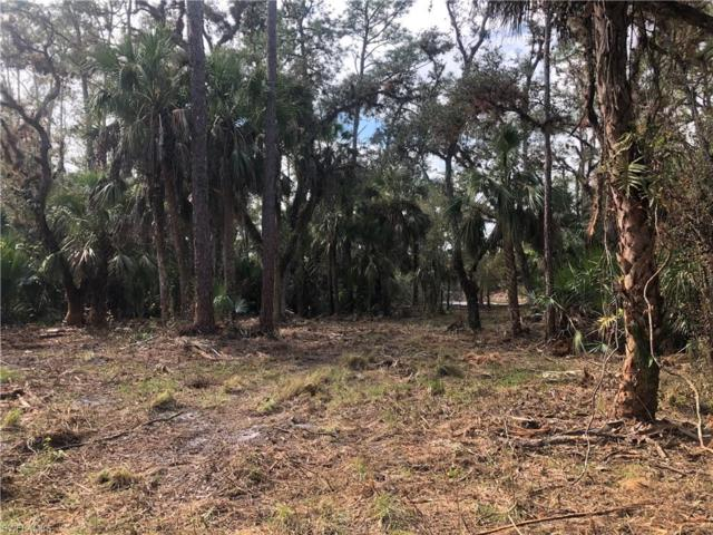 Tom Coker Rd, Labelle, FL 33935 (MLS #218079898) :: RE/MAX Realty Group
