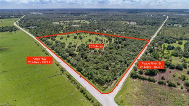 SW Peace River St, Arcadia, FL 34269 (MLS #218081213) :: RE/MAX Realty Team