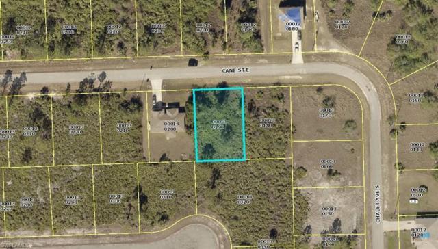 646 Cane St E, Lehigh Acres, FL 33974 (#218083426) :: Jason Schiering, PA