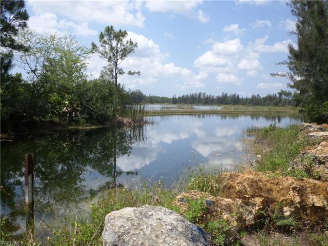 179 Ocean Park Dr, Lehigh Acres, FL 33972 (MLS #219003062) :: RE/MAX Realty Team