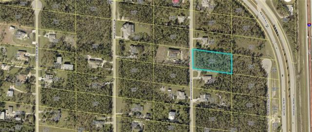24165 Roger Dodger St, Bonita Springs, FL 34135 (MLS #219003244) :: RE/MAX Realty Group