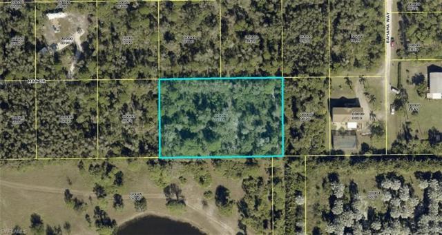 7001 Max Dr, Bokeelia, FL 33922 (MLS #219003511) :: #1 Real Estate Services
