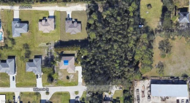 6881 Babcock St, Fort Myers, FL 33966 (MLS #219003787) :: RE/MAX DREAM