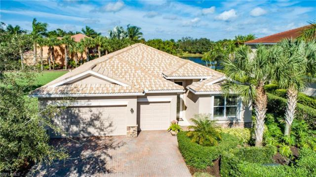 13019 Turtle Cove Trl, North Fort Myers, FL 33903 (MLS #219003846) :: The New Home Spot, Inc.