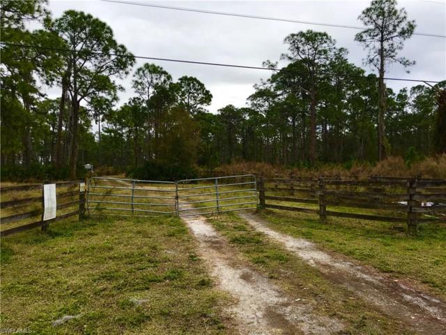 17571 E Jamestown Circle, North Fort Myers, FL 33917 (#219009369) :: Jason Schiering, PA