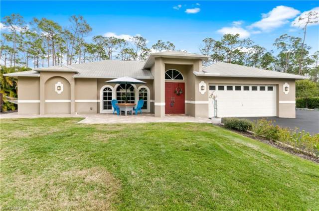 24065 Roger Dodger St, Bonita Springs, FL 34135 (MLS #219009826) :: RE/MAX DREAM