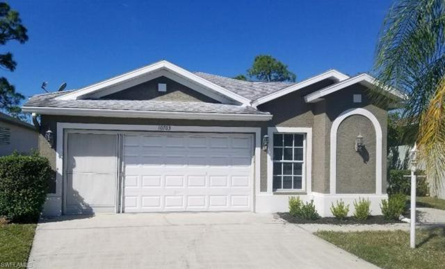 10703 Maui Cir, Estero, FL 33928 (MLS #219010354) :: John R Wood Properties